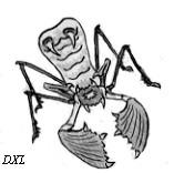 alienBug.png